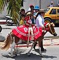 Caballo de Rio Lagartos.jpg