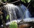 Cachoeira em Delfim Moreira - MG.jpg