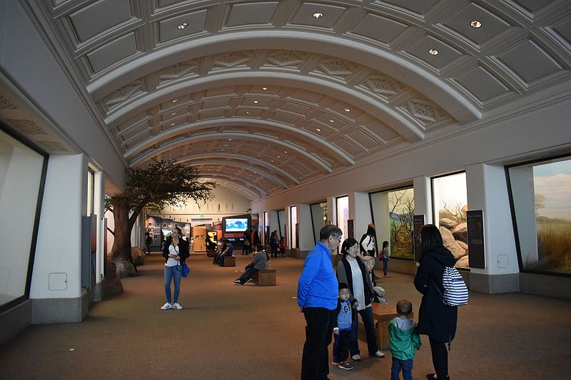 Datei:California Academy of Sciences - Tusher African Hall 4 2017-04-01.jpg