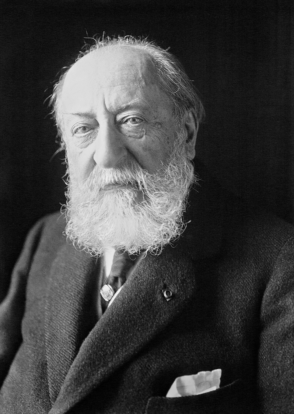 Camille Saint-Saëns - Wikimedia Commons