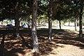 Camping en Complejo Centro Militar Salinas 2 - panoramio.jpg