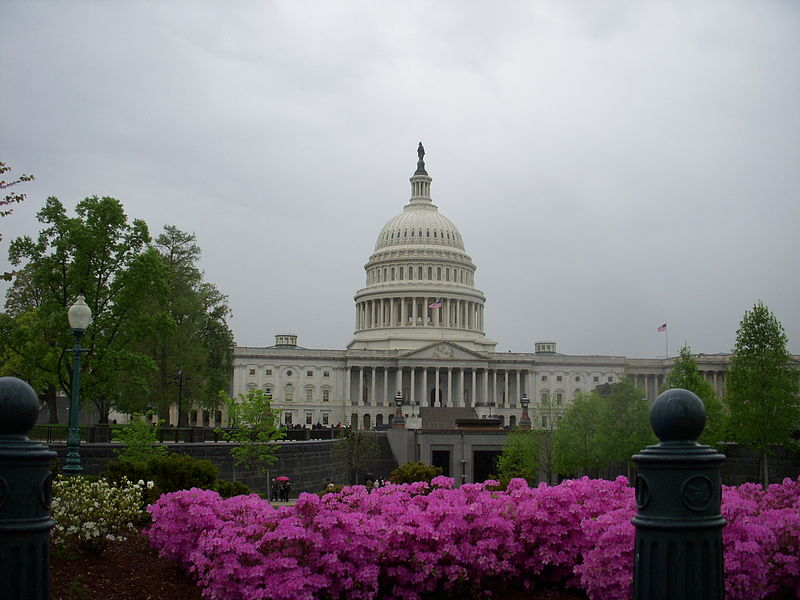 Archivo:Capitol with Flowers.jpg
