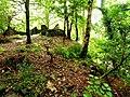 Castell Deudraeth - geograph.org.uk - 1084122.jpg
