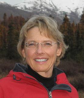 Cathy Giessel American politician