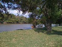 Cauca River. Cattle resting in San Marcos, Yotoco, Valle del Cauca.jpg