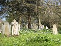 Cemetery at Kenwyn Church - geograph.org.uk - 765798.jpg