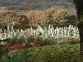 Cemetery near Minffordd - geograph.org.uk - 859702.jpg
