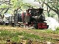 Cepu Forest Railway Du Croo Brauns Locomotive.jpg