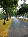 Chakaphan Rd. (ถ.จักรพันธ์) - panoramio.jpg