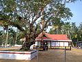 Chakkamparambu temple - panoramio.jpg