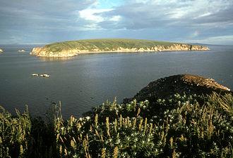 Chamisso Wilderness - Chamisso Island