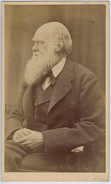 Charles Darwin photograph by Oscar Rejlander, circa 1871.jpg