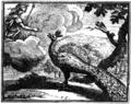 Chauveau - Fables de La Fontaine - 02-17.png