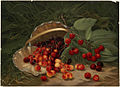 Cherries by Boston Public Library.jpg