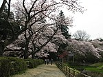 Chiba Noda Shimizu Park 1.jpg