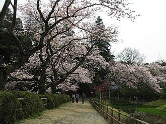 Noda, Chiba - Shimizu Park in Noda
