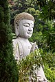Chin Swee Caves Temple. Buddha statue. 2019-12-01 13-51-03.jpg