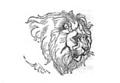Christmas Box Lion.png
