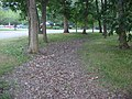 Chrysler Enclosure, northeastern ditch.jpg