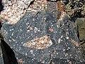 Clast-rich impact pseudotachylite (Sudbury Breccia, Paleoproterozoic, 1.85 Ga; Windy Lake Northwest roadcut, Sudbury Impact Structure, Ontario, Canada) 33 (46823137565).jpg