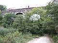 Clinnick Viaduct - geograph.org.uk - 574536.jpg