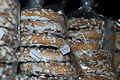 CocinaPalentina-Rosquillas de Baño 001.JPG