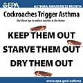 Cockroaches Trigger Asthma.jpg