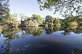 Coleman river camp 2 (14914661262).jpg