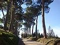 Collestrada (PG), accesso al borgo - panoramio.jpg