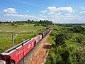 Comboio parado sentido Boa Vista na Variante Boa Vista-Guaianã km 201 em Itu - panoramio.jpg