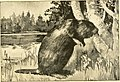 Commissioners' report (1892) (14755554885).jpg