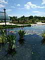 Como Park Zoo and Conservatory - 13.jpg