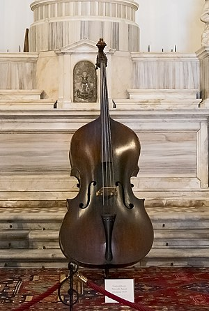 Nicola Amati - Double bass