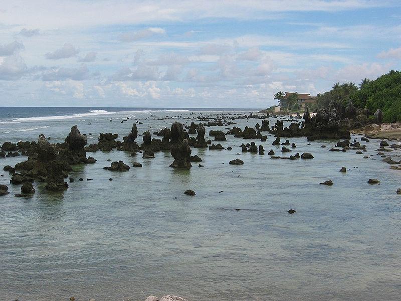 Ficheiro:Coral reef on Nauru.jpg
