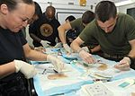 Corpsmen learn suture techniques 120227-N-ZP663-058.jpg