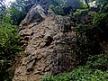 Creswell Gorge, Creswell Craggs, Notts (102).jpg