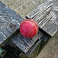 Cricket ball at North London Cricket Club Crouch End London 1.jpg