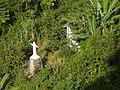 Cristo Redentor Barra Funda 014.jpg