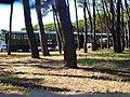 Croce Rossa Italiana VIII Centro de mobilitazione Hospital train 6409.jpg