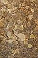 Cromatismi murari-24 (7837611836).jpg