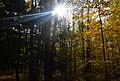 Cuyahoga Valley National Park (10544246126).jpg