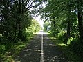 Cycle track towards Lancaster - geograph.org.uk - 2463381.jpg