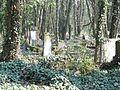 Czestochowa cmentarz zydowski 04.jpg