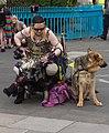 DUBLIN 2015 LGBTQ PRIDE FESTIVAL (PREPARING FOR THE PARADE) REF-106211 (19055076300).jpg