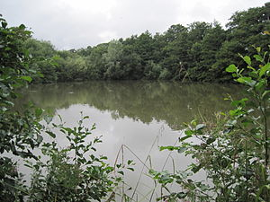 Totteridge - Darland's Lake