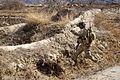 Defense.gov photo essay 110220-A-8041W-075.jpg