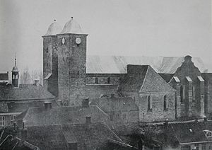 Viborg Cathedral - The 'old cathedral' in 1863.
