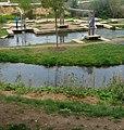 Der Fischpass wurde zur Gartenschau angelegt. - panoramio.jpg