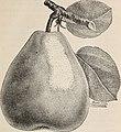 Descriptive catalogue of fruit trees small fruits, etc. (1895) (20867579812).jpg