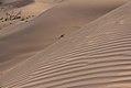 Deserto - Desert of Abu Dhabi (17173587730).jpg